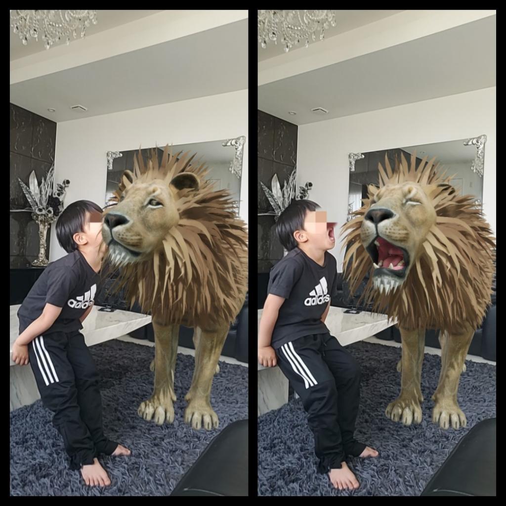 3d動物 ライオン