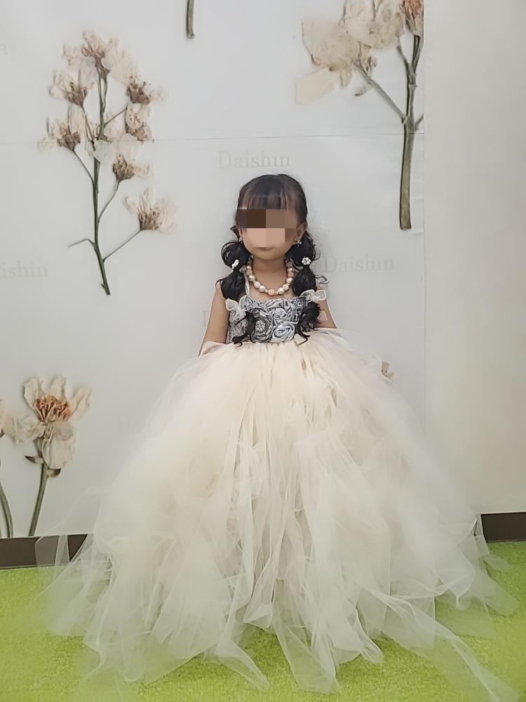 女の子3歳七五三前撮り写真 髪型とドレス