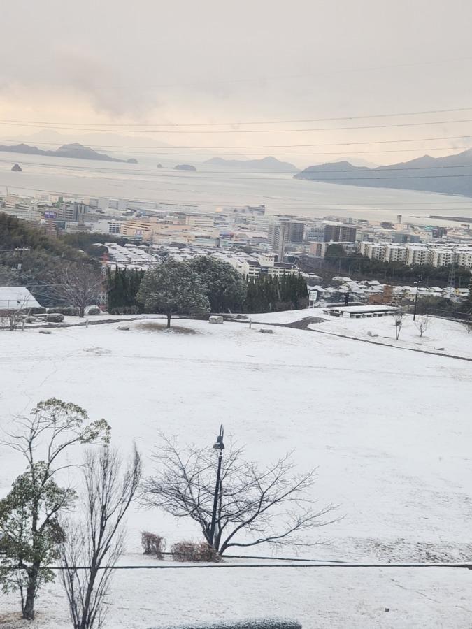 雪が積もっている写真