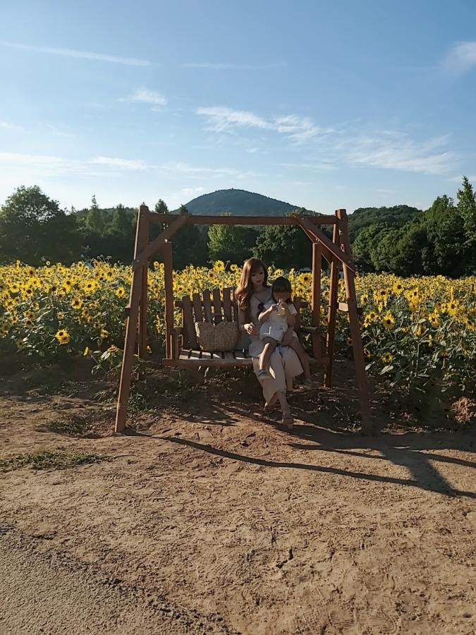 世羅ひまわり畑